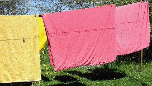 干している衣類や布団についているカメムシの取り除き方