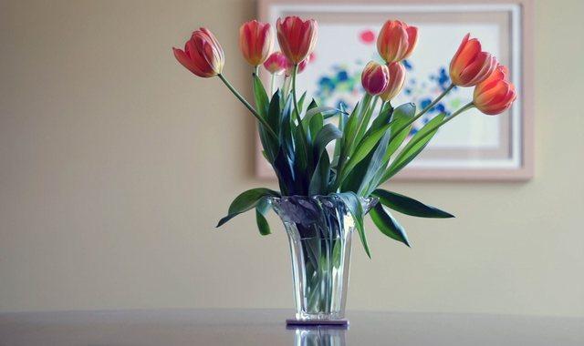 切り花が早く枯れやすい理由