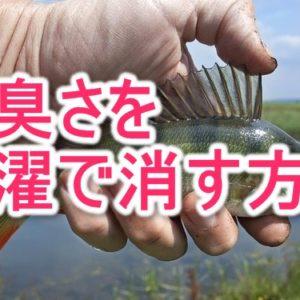 魚臭い衣類を洗濯して匂いを消す